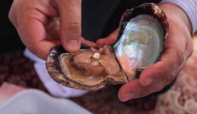 Жемчуг в моллюске